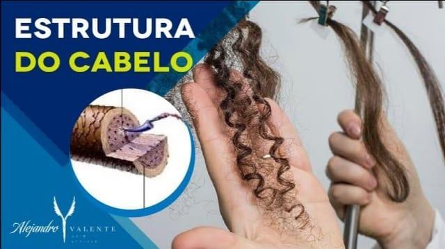 Estrutura do cabelo: Cutícula, Córtex e Medula