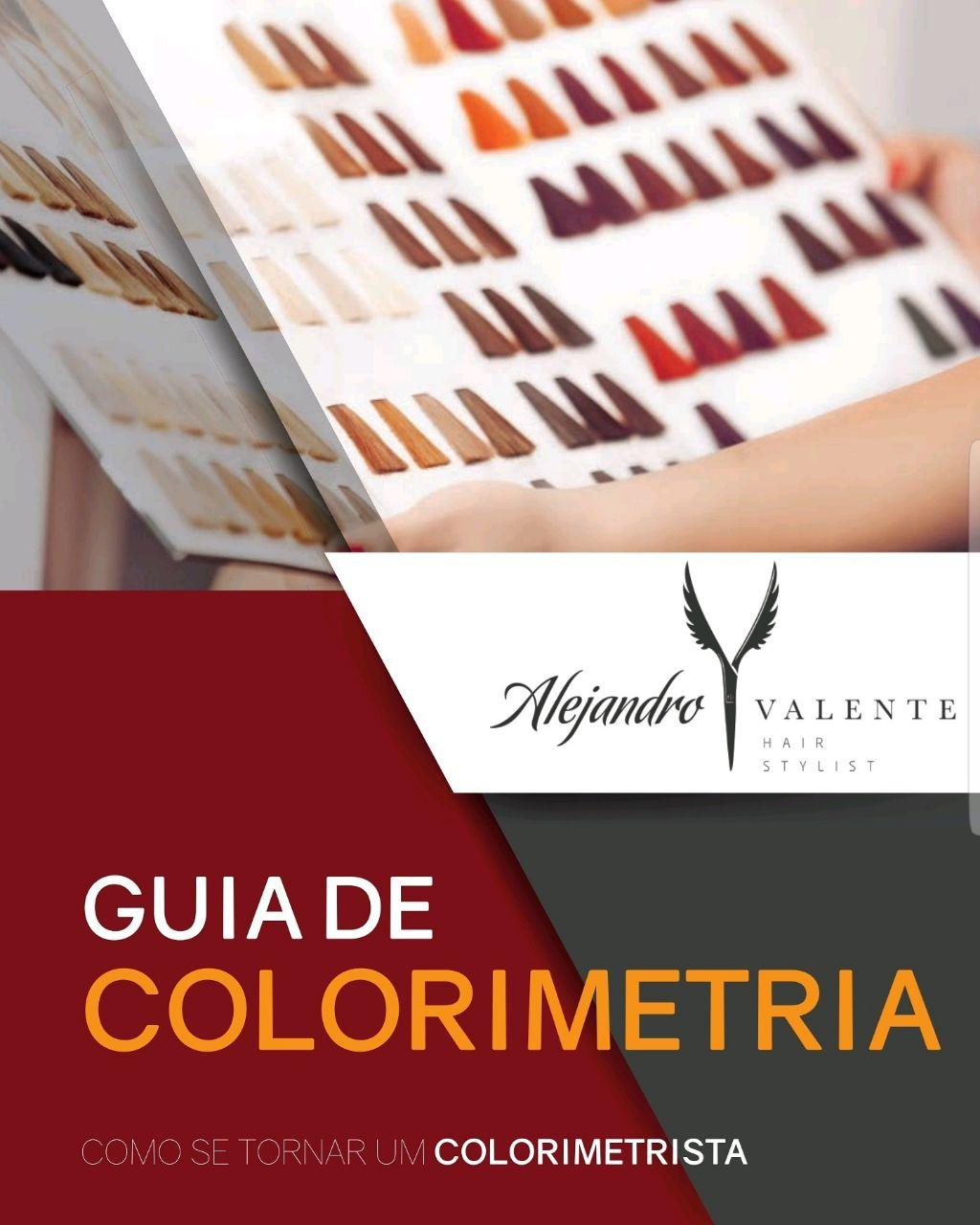 Ebook - Guia de Colorimetria capilar